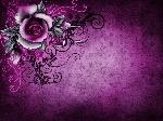 60vintage_grunge_rose_pa.jpg